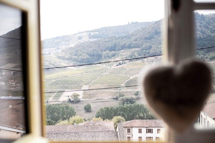Maison au cœur du Beaujolais avec vue imprenable !
