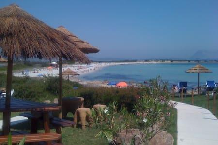San Teodoro (OT) Sardegna Italia - San Teodoro - Apartamento