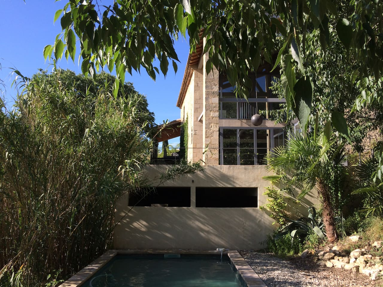 the house and the swimming pool surrounded by bamboos and trees