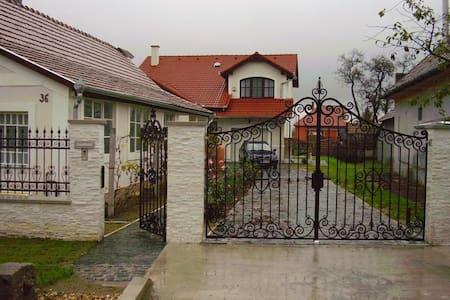 Budapest környezetében, gépkocsival - Vasad - Σπίτι