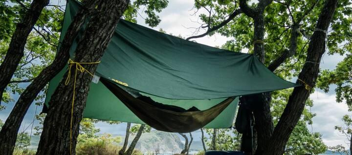 Ophold/overnat i din egen private ugeneret skov