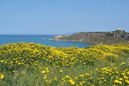 Milazzo ampia camera al mare vicino Isole Eolie - Milazzo
