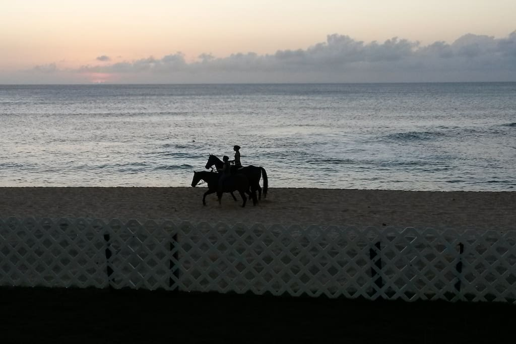ENJOY SUNSETS AS HORSES RIDE BY
