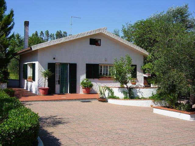 LAST MINUTE BASILICATA    villa  - Pisticci - Villa
