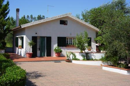 LAST MINUTE BASILICATA    villa  - Pisticci