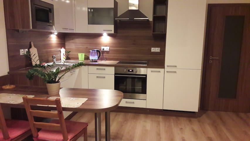 Comfortable Apartment (+terrace & parking spot) - České Budějovice - Leilighet
