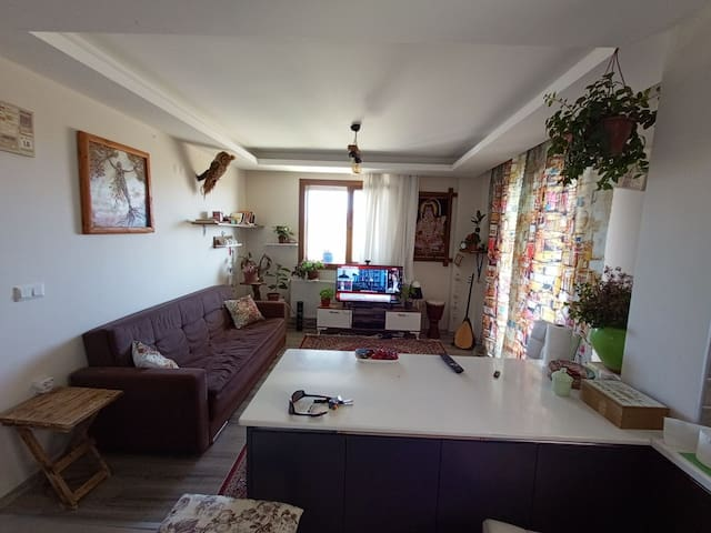 Homestay Butique Hostel