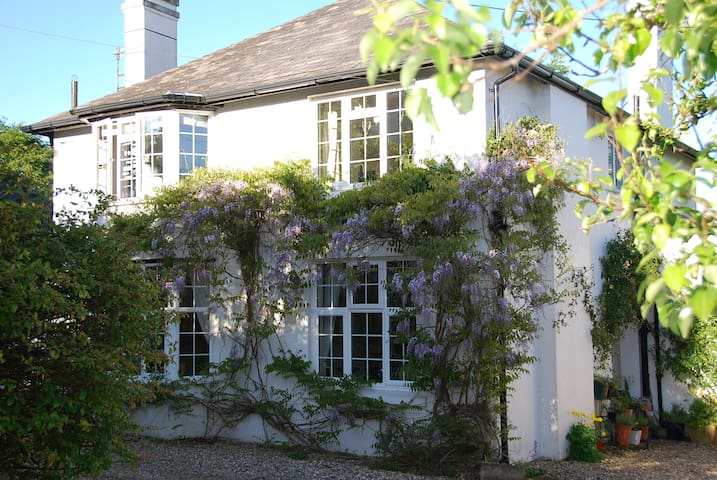 Wisteria House Dartmoor National Pk - Okehampton