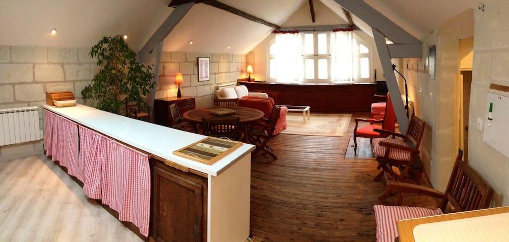 Amazing flat in Saumur
