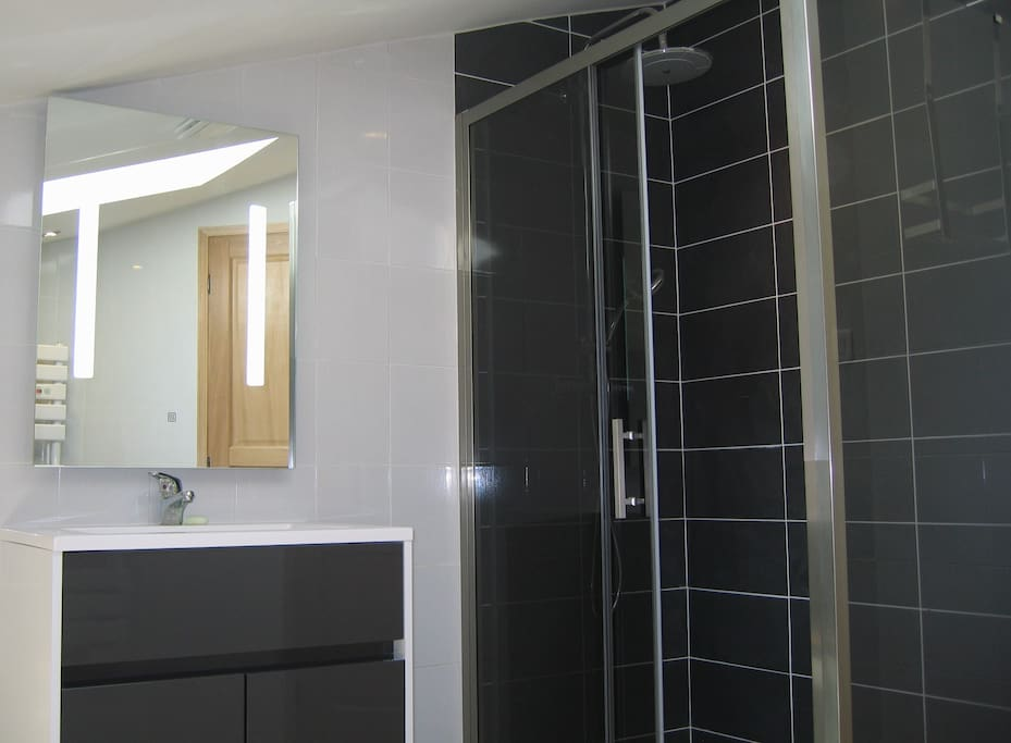large shower enclosure. dual shower head. heated towel rail and antimist mirroir. fully tiled.
