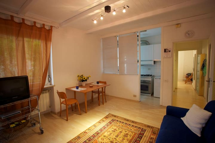 Sempre il salotto ma da un'altra angolazione. La Cucina è separata da un muretto basso e delle tendine. Sullo sfondo l'ingresso della camera da letto.
