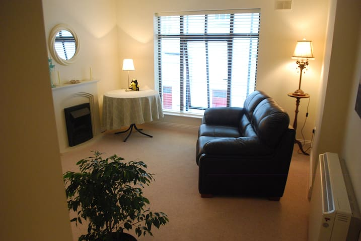 2 Bedroom in the heart of the city - Kilkenny - Flat