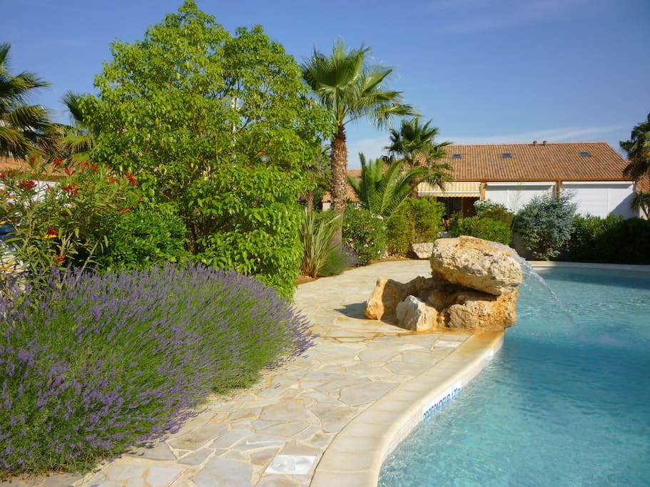 The landscaped pool-side