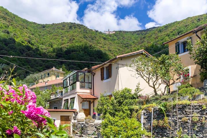 Il frantoio di Rapallo - Rapallo - House
