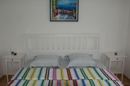 Charment appartement - Neuf-Brisach