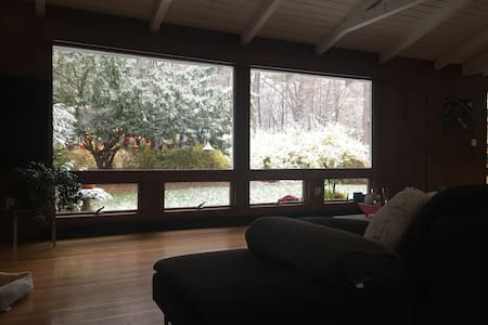 MID CENTURY MOD w FIREPLACE & VIEWS - New Paltz