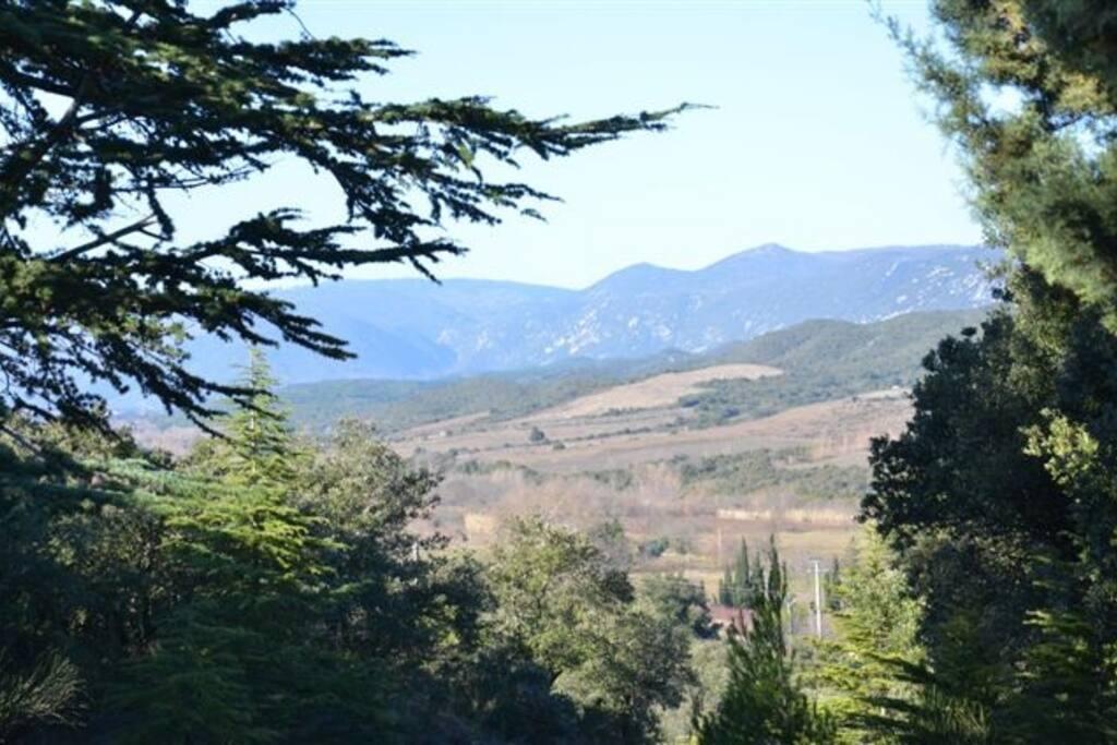 la vue splendide sur les vignes et les montagnes