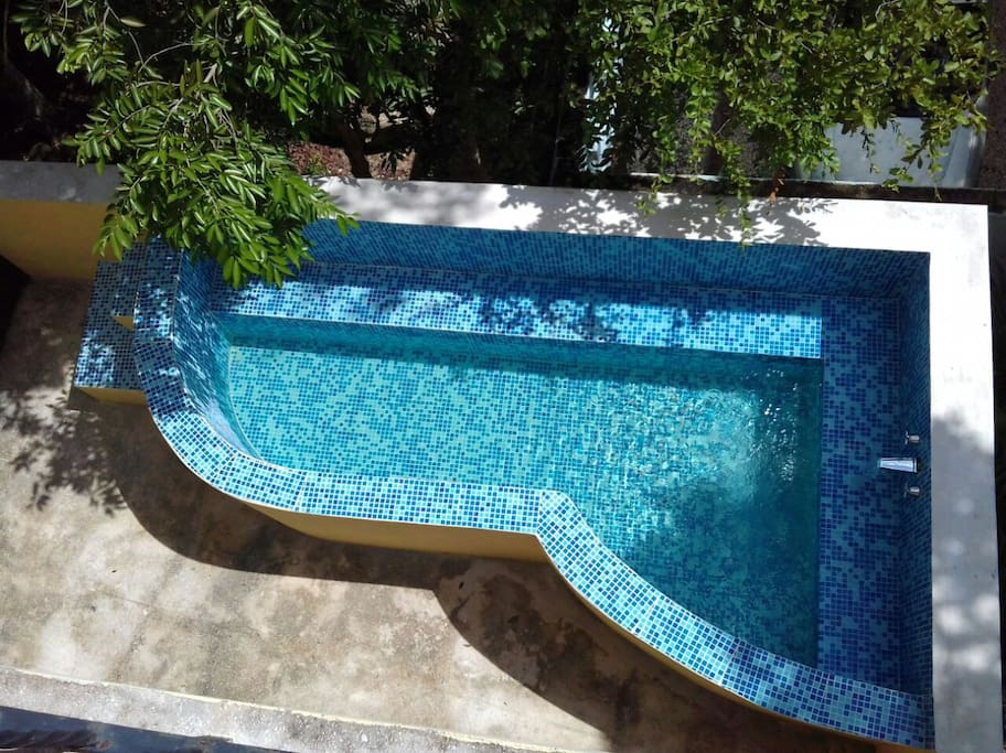 Our specially designed plunge pool that you empty to water the garden!
