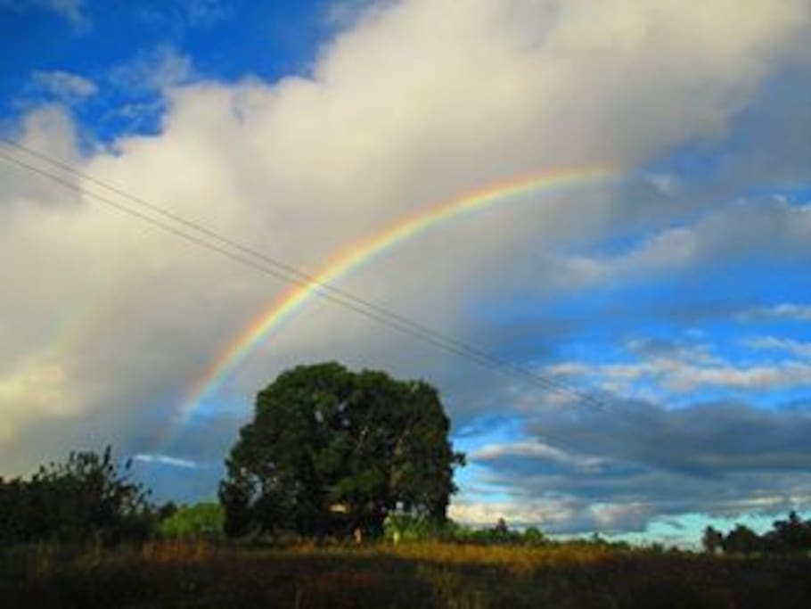 Now and then there is rainbow right in front of the property.