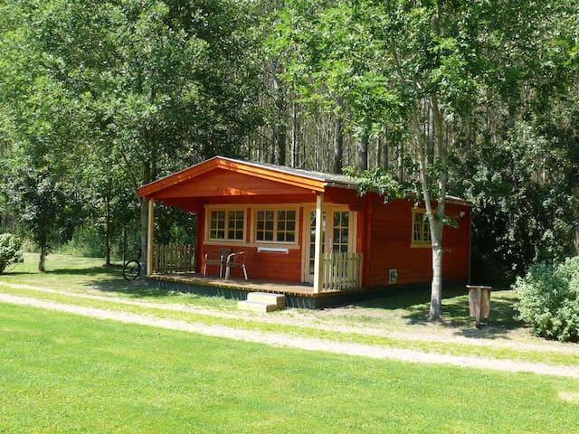 Vakantiehuisje in inspirerende natuur (Veelerveen)