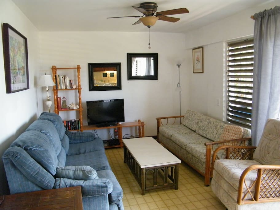 UPDATED Living Room!  Spacious, Bright and Sunny!  Dish Network Satellite TV Programming!