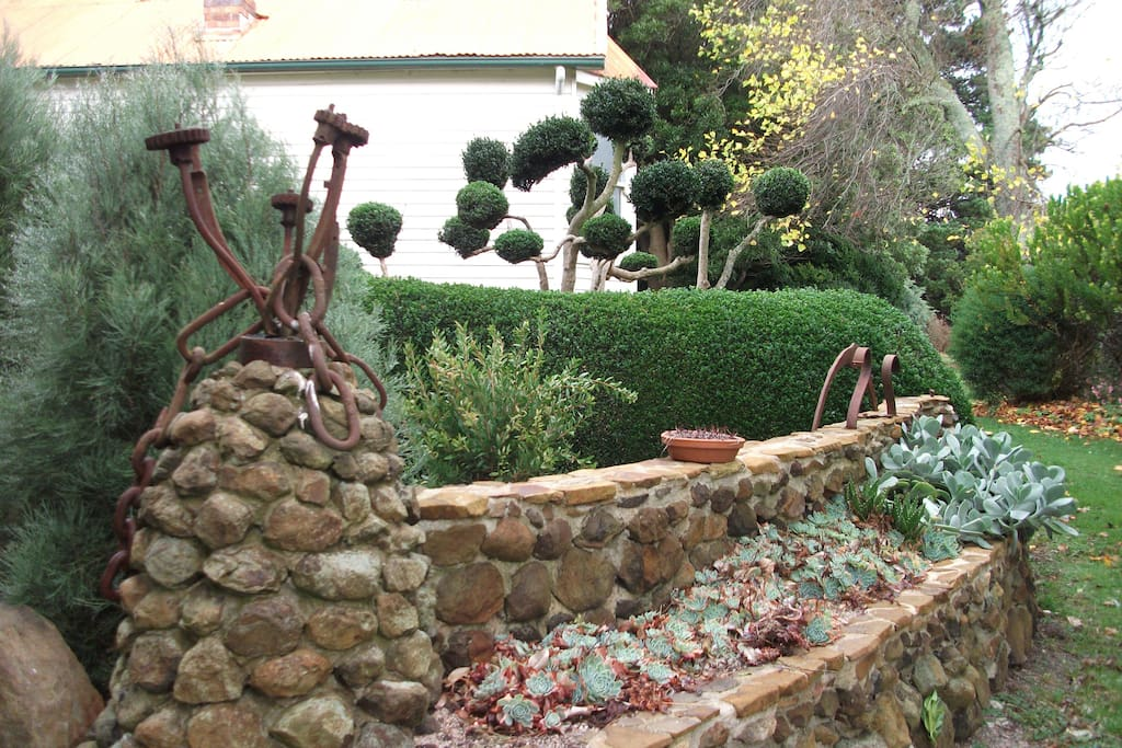The old cottage seen behind the succulent wall and the cloud pruned tree - planted 1880