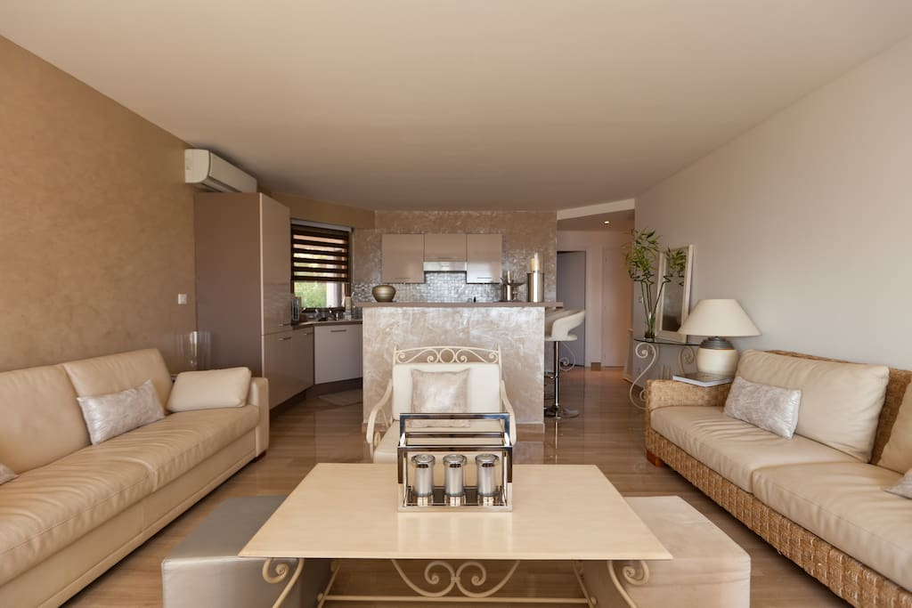 Apartments In Cannes France For Rent