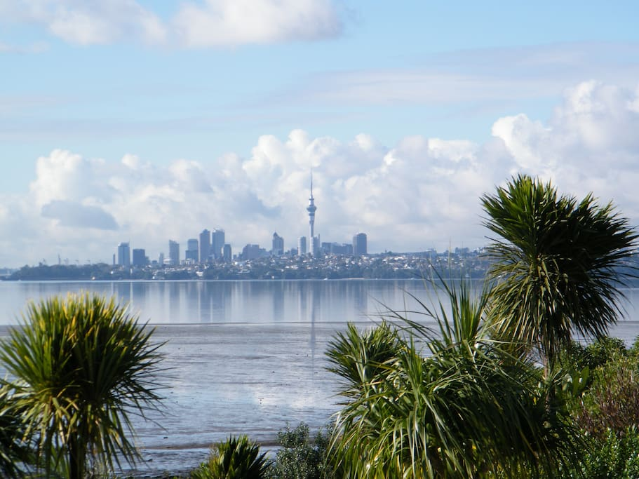 view to Auckland city from the house