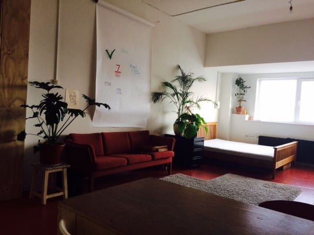 Spacious loft 10min from central station by bike. - Ámsterdam - Loft
