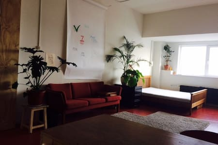 Spacious loft 10min from central station by bike. - Amsterdam