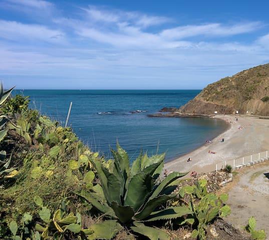 Propriété Bord de Mer - l'Ouille - Argelès-sur-Mer - Casa