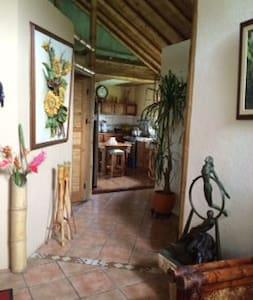 Bamboo House - La Suiza - House