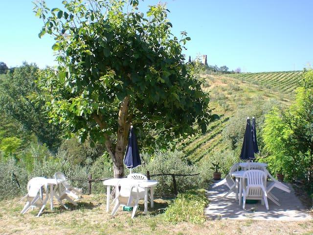 "Agriturismo "" Podere Cappella . . "" - San Gimignano - Bed & Breakfast"