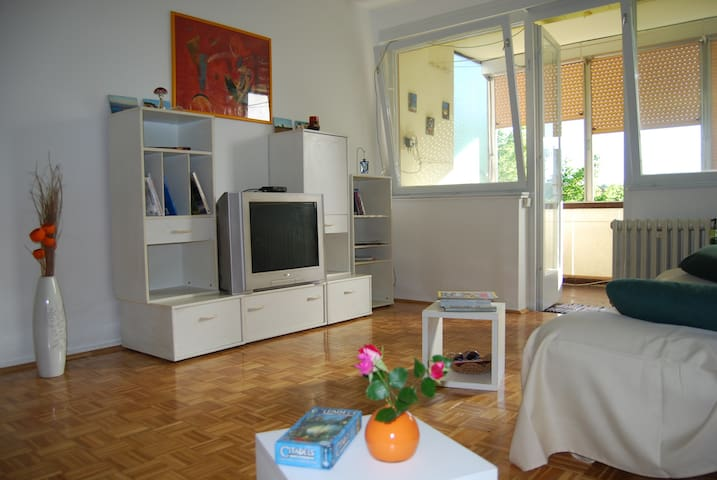 River stop to Plitvice and coast - Karlovac - Appartement