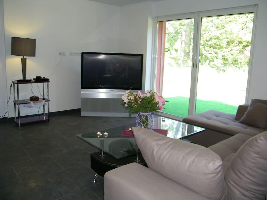 Salon vue sur jardin tv rétroprojecteur écran plat +cable satélite .