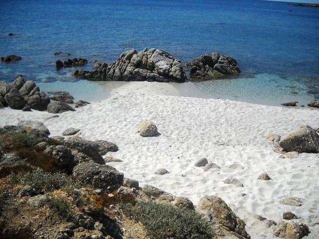 Sardegna: appartamento per 2/4 persone - Riola Sardo - Lejlighed