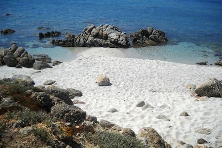 Sardegna: appartamento per 2/4 pers - Riola Sardo