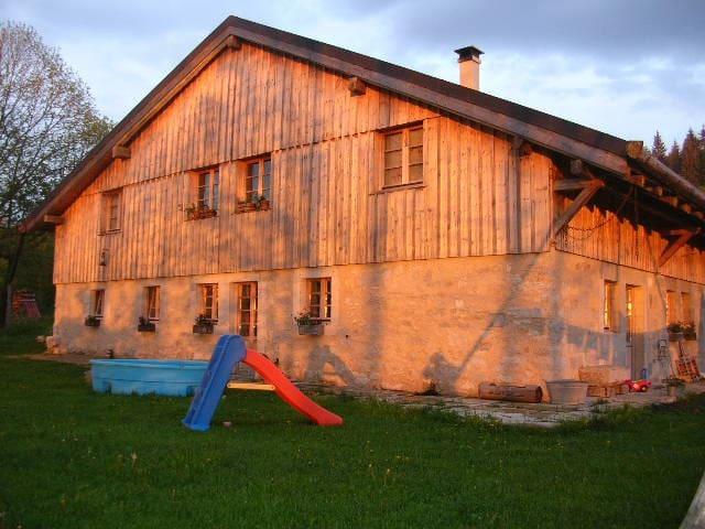 Un coin de paradis, ferme rénovée - La Cluse-et-Mijoux - Apartment