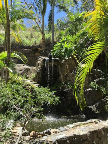 Lush Gardens with a Waterfall