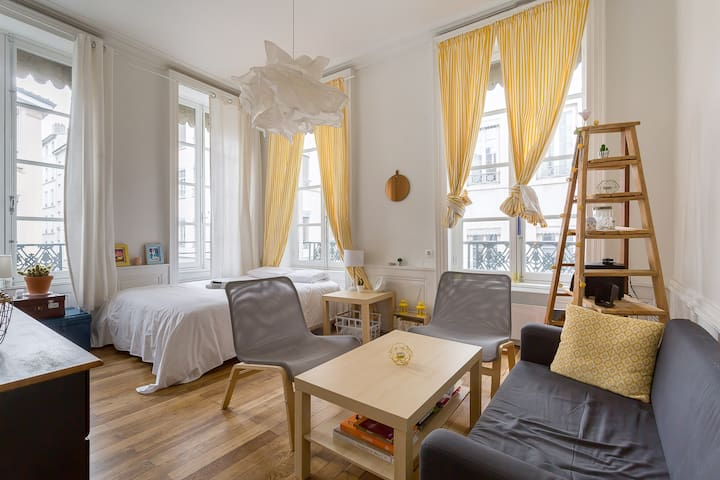 PRO AGENCY - Beautiful apartment for 3 in Lyon