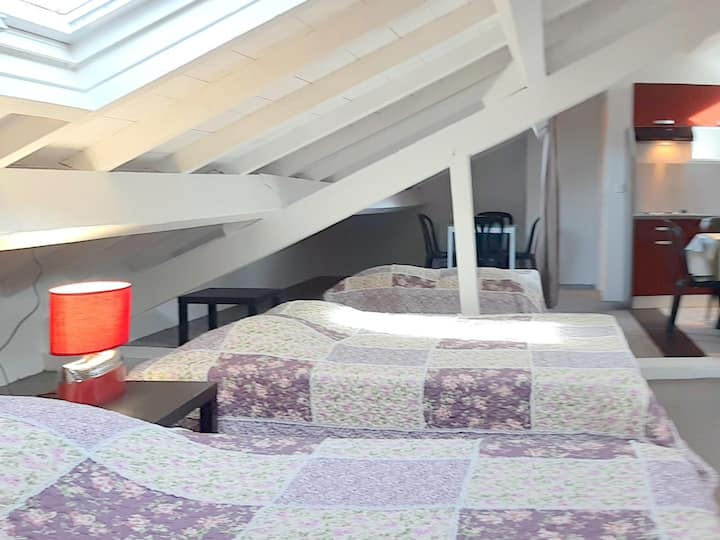 Spacious penthouse apartment