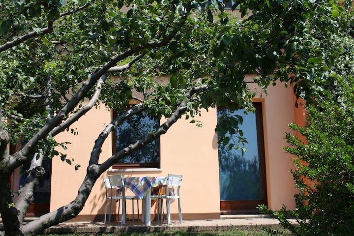 Lago Maggiore appart.+giardino - Carpiano - Pis