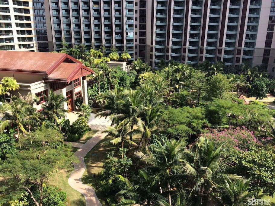 热带风格园林