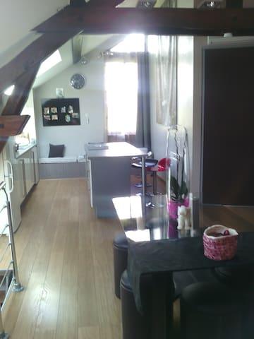 Chambre dans joli appartement Atypique - Voiron - Flat