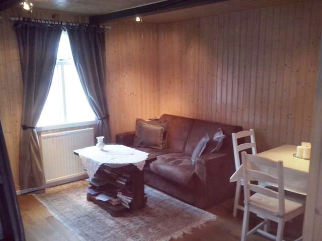 Cozy apartment downtown Isafjordur