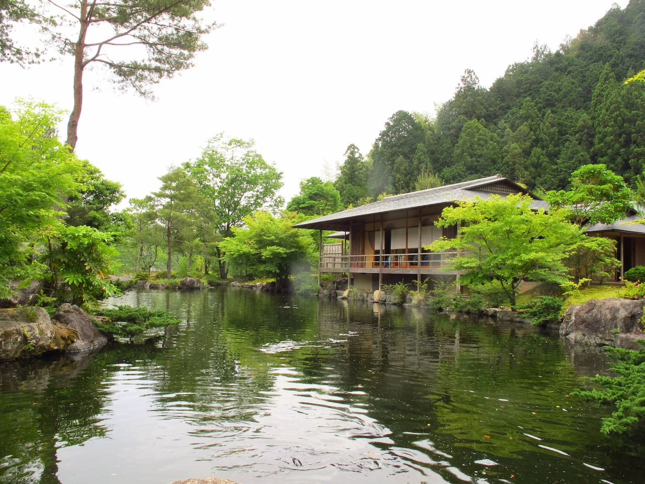 Green Tea ceremony - Traditional Garden and Traditional Japanese Architecture.