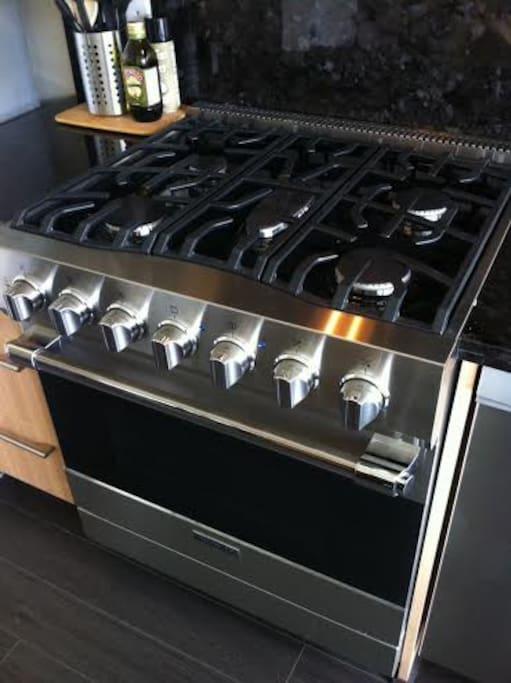 Professional 5 burner gas stove