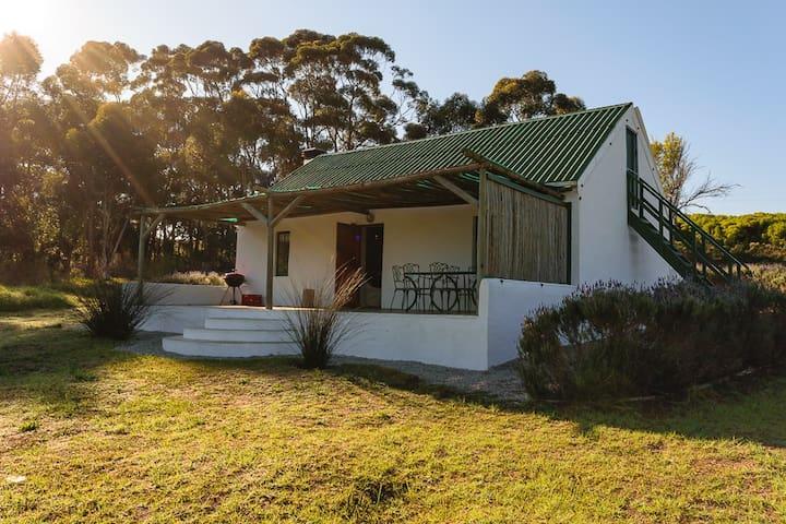 Windheuvel Cottage