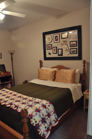 Travel Suite in Asheville - Arden - Apartment