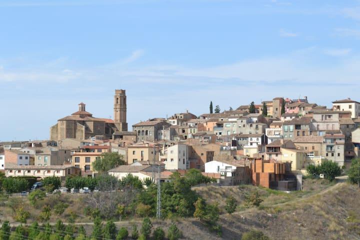 Cal Campana - Grapevine